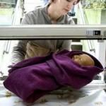 El costo de la austeridad: niños abandonados en Europa (Hno. Danilo)
