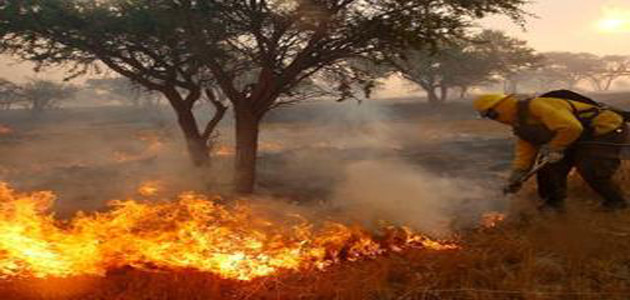 chile_incendio_enero_reu_680