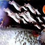 Prédica: Las resurrecciones y el juicio final