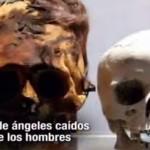 NEFILIM (Angeles Caídos) y La Marca de LA BESTIA. [Aporte Hna. Marisol A.]