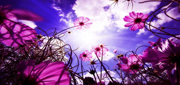 Paisaje_con_flores