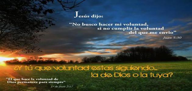 1356723499802-la_voluntad_de_dios_3