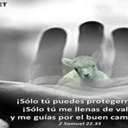 """""""TU PROTECCION ES PARA SIEMPRE"""""""