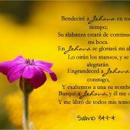 """""""Salmos 34 """""""
